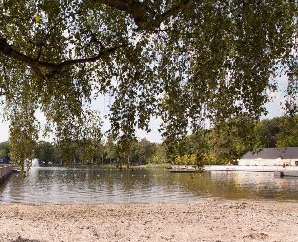 zwembad boom strand